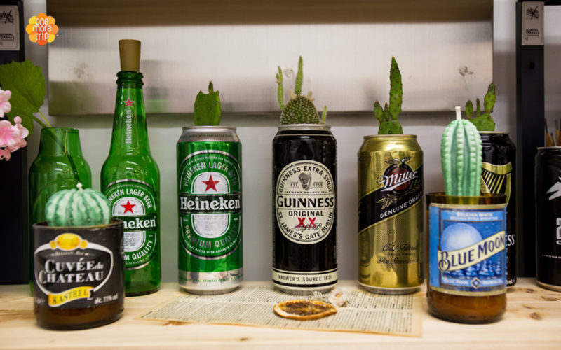 upcycling succulent beer can
